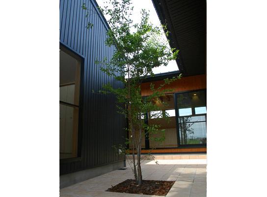 三空の家_梶浦環境建築設計事務所
